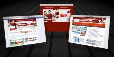 Website INTA 2013.1