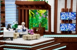 Ellen Lego Set Shot 6